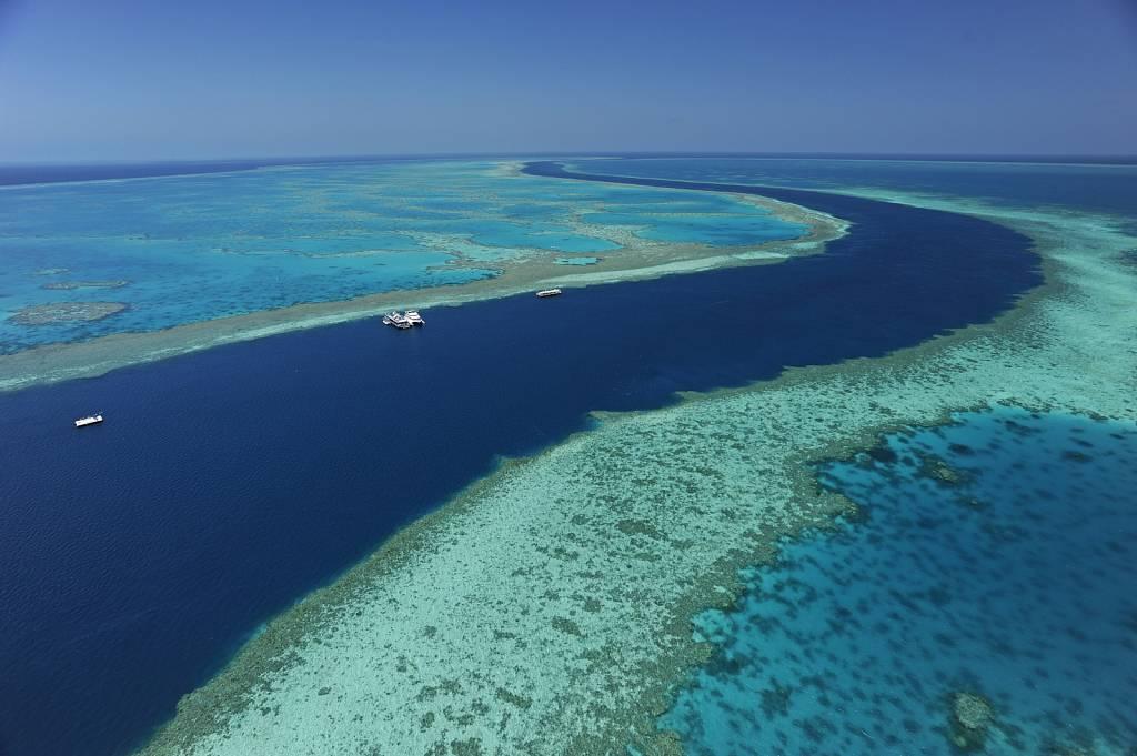 Hardy Reef, Great Barrier Reef